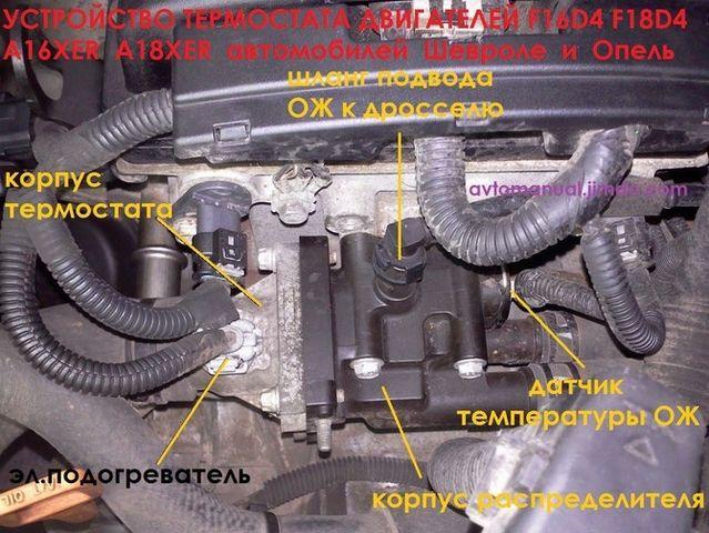 Система охлаждения Шевроле Авео