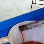 Замена масла в АКПП Хендай Солярис